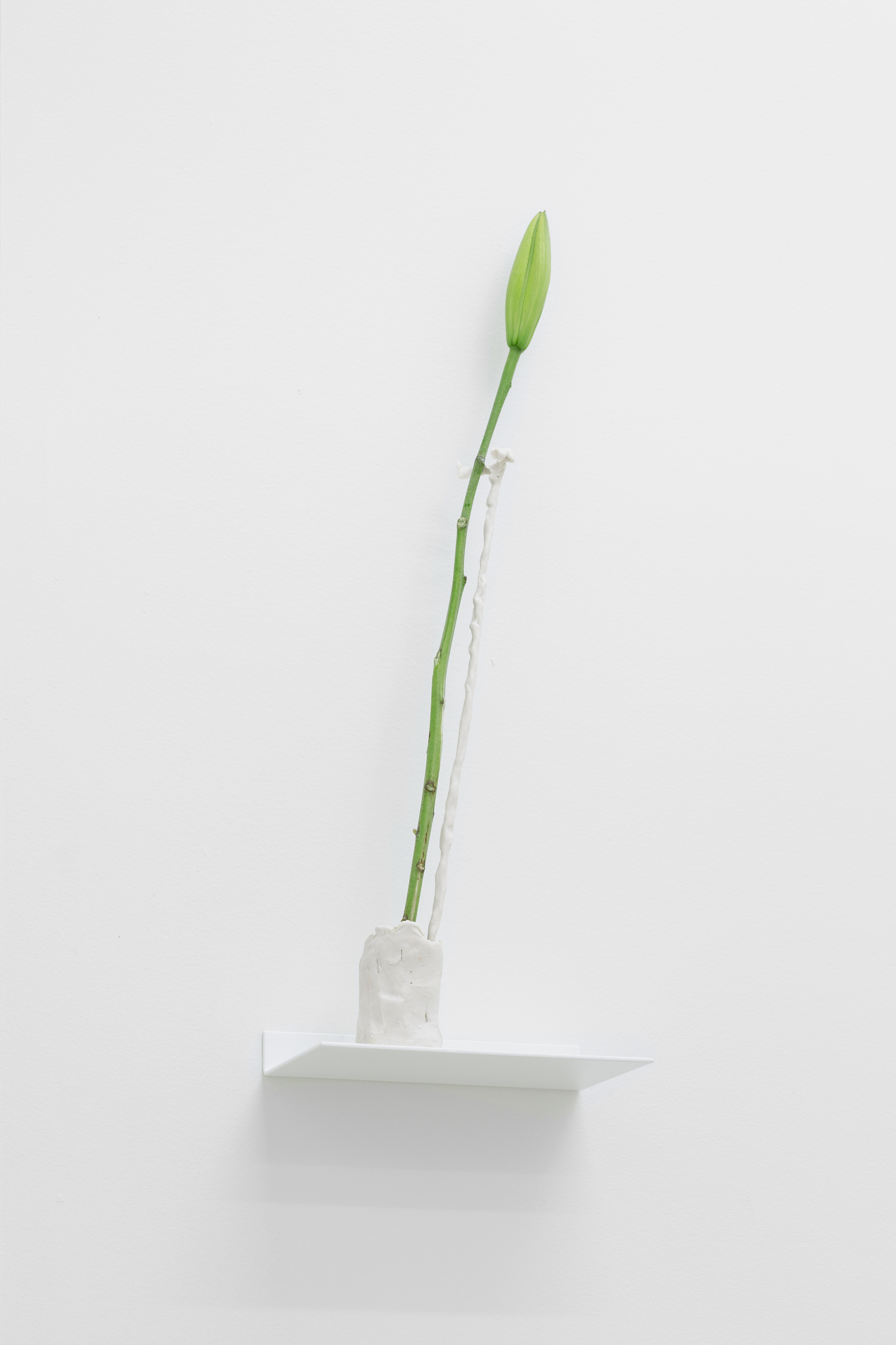 "a bibliography (Sound Screen) Porcelain vessel, porcelain crutch, 6×10"" powder coated custom steel shelf, stargazer lily 2019"
